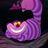 Cheshire Cats Finale
