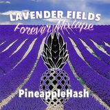 Lavender Fields Forever Mixtape