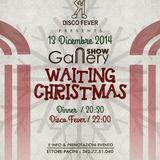 Gallery Show Discofever 13122014