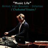 Armin Van Buuren - Intense (Orchestral Version)