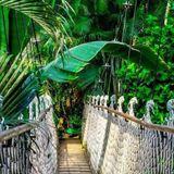Das Erträgliche der Jungle Top 100 Teil 2