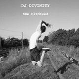 Dj Divinity  The Birdfeed Mix