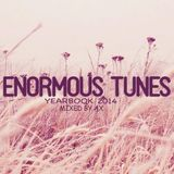 Enormous Tunes Yearbook 2014 (Mixed by AX)