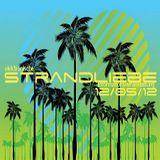 Druckwelle - Elektronische Strandliebe 2012 - Afterhour Set