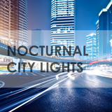 Nocturnal / City Lights