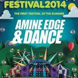 2014.05.04 - Amine Edge & DANCE @ Stereofunk Festival, Glasgow, UK
