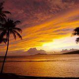 Stranger in a Strange Land 2010-10-09: Aloha!
