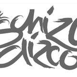 Schizo Dizco
