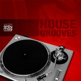 House Grooves