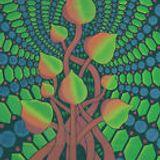Psilocinsoundz- Psychedelic Trance- Studio Mix January 2016.