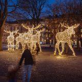 Hemisferio Boreal | Navidad en Estocolmo