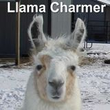 Llama Charmer