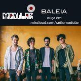 Modular#113 - Baleia