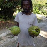 Breadfruit Sessions Vol. 11 - Corey Dawkins