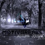 Motivbreaks-Autumn journey bass mix