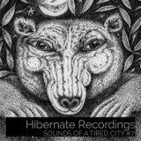 Sounds Of A Tired City #7: Hibernate Records