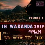 IN WAKANDA 2019~ [BEST of 2018 MIX]