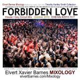 FORBIDDEN LOVE 80's Disco / THE SAINT (October 2010) Mix
