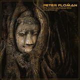 Peter Floman - Flocast 032