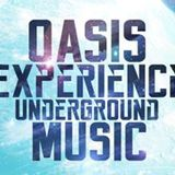 Oasis Experience #006 By Harry Schill