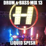 Drum & Bass Mix 13 - Liquid Spesh