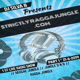 DJ SILVA B - LIVE STRICTLY RAGGA JUNGLE PART 1 21-06-2019