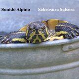 Sabrosura Salsera - Sonido Alpino - Old Salsa Music