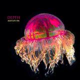 Depth Mixtape 004 Big Room House & Techno