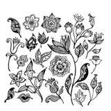 RDJ's Fleurs Noir De Mai Part Une 2013