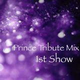 PrinceTributeMix-1stShow