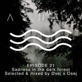 Episode 21 sadness in the dark forest selected & mixed by Øsej x Osej