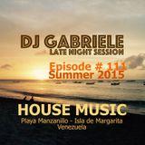 Episode # 111 House Music Mix By Dj Gabriele 2015