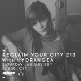 Reclaim Your City 213 | Hydrangea