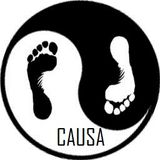 Causa - Barefoot Sessions (Minimix)