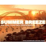 Summer Breeze (August 2013)