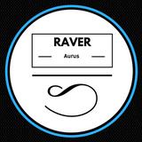 Raver 22