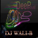 DJ WALI-B SOULFUL HOUSE MIX SESSION PT 9