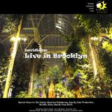 Live in Brooklyn - David Liam - Techno live