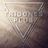 Trigones + - Radio Kids
