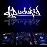 DJ Dudukid - Electo House Mix 5