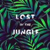 LOST IN THE JUNGLE - Downtempo, Electro Tribal & Ethnic Mix