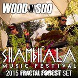 Wood n Soo - Shambhala 2015 Fractal Forest Mix