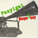 Panyigai HangmÜhely - Újévi Rádiójáték 2016
