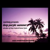 Deep Purple Summer (Tropical House Mixed by NavBaig)