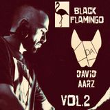 David Aarz presents Black Flamingo Vol.2