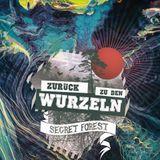 Zurück Zu Den Wurzeln Festival 2016 - Druckkammer Closing