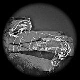 Jorge Saxon - Mustangs wild horses (Live Dj Mix)