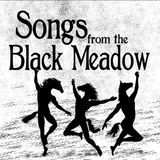"""A Minstrel Came Out of the Meadow - The Artists of """"Songs from the Black Meadow"""""""