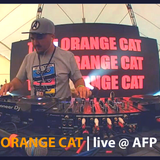 THAT ORANGE CAT (aka Kuraj-Bambey)  live @ A F P 2018