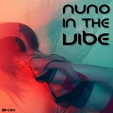 Nuno In The Vibe EP-010 (New Year Mix 2015)